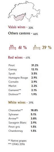 Hospitality_Insights_Valais_Wines